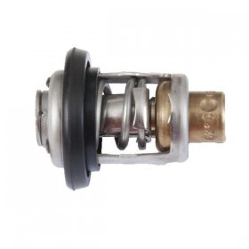 Thermostat Honda BF