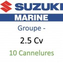 2,5 cv- 10 cannelures